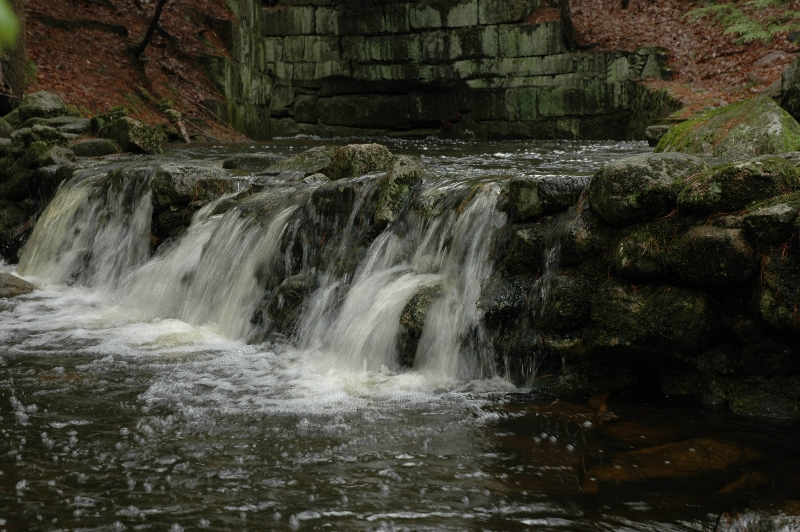Rogers Brook