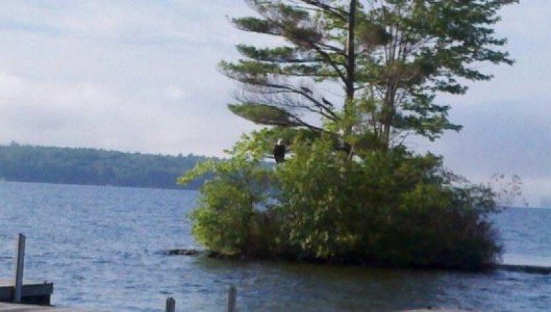 eagle-island-point